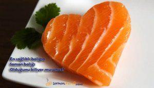 Omega 3 Deposu Somon Balığının Faydaları