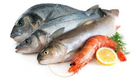 Sağlıklı bir Yaşam İçin Haftada En Az 2 Defa Balık Tüketilmelidir.