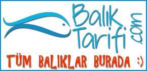 Baliktarifi.com - en lezzetli balık tarifleri burada